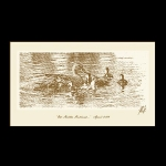 Ducks- Mother Hubbard