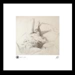 Reclining nude study, print