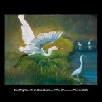Silent Flight Print